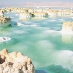 27% ανόργανων αλάτων με υψηλά επίπεδα μαγνησίου, καλίου, χλωριούχου ασβεστίου και βρωμίου.